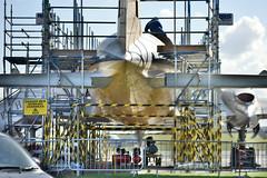 Bristol Britannia 312 (G-AOVT) Under Scaffolding (Bri_J) Tags: iwmduxford cambridgeshire uk iwm duxford airmuseum museum aviationmuseum nikon d7200 imperialwarmuseum bristolbritannia312 bristol britannia airliner propliner monarch scaffolding renovation hdr