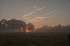 Art in the air (gelein.zaamslag) Tags: holland gelderland veluwe epe zonsopkomst sunrise sky lucht wolkenlucht mist misty mistig mistigeochtend zon oranje weiland meadow natuur nature nederland netherlands nikon nikond5000 goldenhour goudenuur geleinjansen