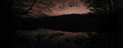 DSC09454 - DSC09460 (weekend_vagabond) Tags: bingley west yorkshire night photography silhouette water reflect reflection slow long expose exposure trees branches time pano panoramic st ives estate