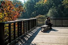 Summer in October (CVerwaal) Tags: centralpark turtlepond newyork ny usa autumninnewyork autumn sonyrx100iii