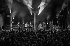 Nant-in-Swing IMG_5432 (photo.bymau) Tags: bymau reportage festival swing dans concert canon 7d bw black white noir blanc negro nantes 2016 elephant atelier danse dance