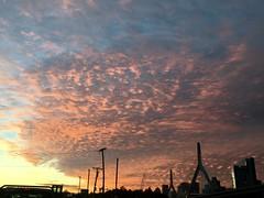 Boston - Sunrise Canvas. (Polterguy30) Tags: zakimbridge zakim bridges bridge skyline clouds cloud silhouettes silhouette sunrise massachusetts boston