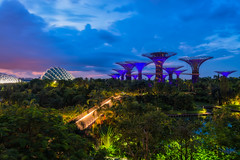 Singapore Sunrise at Gardens by the Bay, a nature park in central Singapore, part of a strategy by the Singapore government to transform Singapore from a Garden City to a City in a Garden. (Bee-Teerapol) Tags: singapore streets night tourism hotel styles urban dusk modern famous public theater river view illuminated traffic skyline marina east twilight dome asia ships reflection architecture bay sea exterior lights cityscape helix crossroads singaporean national waterfront landmark culture built evening roads dark district roof opera esplanade city water sunrise nature prak
