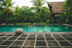 P1040403-Edit (F A C E B O O K . C O M / S O L E P H O T O) Tags: bali ubud tabanan villakeong warung indonesia jimbaran friendcation