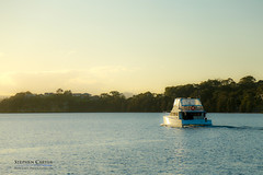 IMG_0510-2 (Scart Photography) Tags: valentine lakemacquarie