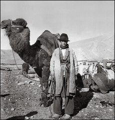 Caravanserai (ookami_dou) Tags: vintage iran persia bedouin camel caravanserai