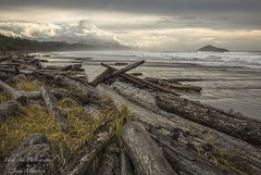Incinerator Beach - Pacific Rim National Park - Vancouver Island (Freshairphotography) Tags: incineratorbeach pacificrimnationalpark pacificocean pacificrim driftwood beautifulbc beach stormy stormyseas ocean clouds vancouverisland explorebc explorevancouverisland beachgrass tourism tofino ucluelet westcoast