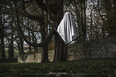 Surreal Photography (dareangel_2000) Tags: dariacasement surrealphotography killynethercountrypark newtownards codown northernireland bizarre dark levitation sinister
