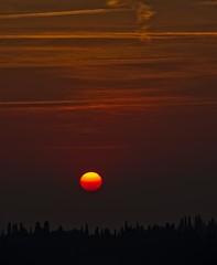 Calando Sui Cipressi (G.Sartori.510) Tags: pentaxk1 pentaxdasmc60250mmf4edifsdm sole sun tramonto sunset nuvole clouds cielo sky cipressi cypresses silhouette
