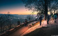 Sunset (Lucian Nuță) Tags: cluj napoca clujnapoca romania winter cetatuie parcul central