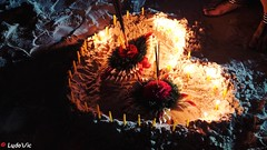 Loy Krathong 2016, Puhket, Thailand (Ld\/) Tags: loykrathong2016 puhket thailand krathong 2016 novembre thailande loy kraton festival patong beach sea lights night november