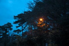 UFO (funk3r080t) Tags: glow solitude lamp light england kent red orange warmth winter cold