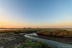 Deich (Re Ca) Tags: nordsee norddeutschland natur nature harlesiel buhne wattenmeer niedersachsen sunrise sonnenaufgang eos70d landscape landschaft sigma1020mm