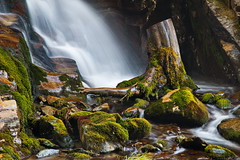 Near the waterfall (antony5112) Tags: autunno ayas cascata cascate champoluc trunk wood moss water mountains stones