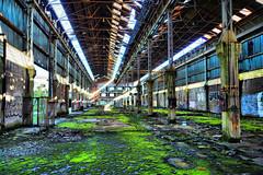 abandoned factory charleroi - HDR (edwin van buuringen) Tags: city abandoned factory safari hdr charleroi dynamicphotohdr sonyslt77v