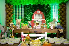 FAZENDINHA DO TULIO 2015 FINAL-4 (agencia2erres) Tags: aniversario 1 infantil festa ano fazenda fazendinha