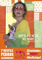 AGATHA 7 desfile solidario de perros abandonados (Bioparc Valencia) Tags: perros agatha aupa agatharuizdelaprada bioparc bioparcvalencia adoptaunperroabandonado desfiledeperros desfilesolidario desfileaupa7
