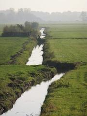 Meandering polder creek (EvelienNL (Noa's Mommy)) Tags: holland netherlands dutch misty creek landscape ditch foggy meadows pasture hazy grassland polder landschap sloot nijkerk meandering putten polderlandschap slootje weilanden arkemheen