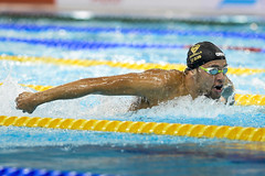 FINA/airweave Swimming World Cup 2015 - Dubai (fina1908) Tags: 2015 fina swimming worldcup airweave dubai leclosrsa unitedarabemirates uae swc swc15