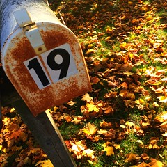 Nineteen (Roger Rua) Tags: autumn leaves mailbox 19 nineteen iphone5s