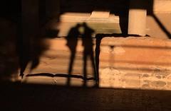 09 Mérida Casa Mitreo Clotxa shadow (xabyjordi) Tags: extremadura yuste trujillo caceres coria plasencia alcantara dolmen lacara tapias mellizos valencia de alcántara merida olivenza elvas evora portugal manuelino renacentista medieval románico gótico azulejo portugués neolítico romano puente teatro