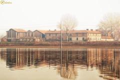 Parco delle Folaghe (LightRapsody) Tags: parco lago campagna acqua riflessi oasi podere agricola azienda folaghe