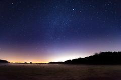 DSC_8725.jpg (Boy of the Forest) Tags: trees sky field fog night stars landscape florida meadow wideangle astro galaxy astrophotography astronomy fl nightsky 15mm milkyway gemeni gemonidsmeteorshower