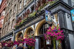 decan brodies tavern (aprilpix) Tags: scotlandroyalmile edinburgh streetscene restaurant architecture aprilpix