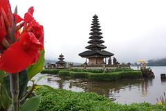 Temple Ulundanu Bratan Bali (suyasa) Tags: ulundanu temple bali danau bratan bedugul landscape photography flower
