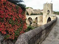 198 Besalu Spain (saxonfenken) Tags: 1009s 1009 besalu spain bridge flowers tower challengeyouwinner pregamewinner perpetual