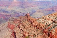 Grand Canyon (Paige_Terhune) Tags: follow comment like desert red cliff mountain arizona az grandcanyon