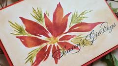 seasons greeting close up (Rosemary D.) Tags: pennyblack redstar