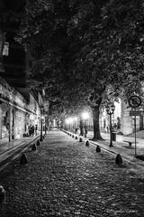 Buenos Aires at Night (claudiov958) Tags: argentina biancoenero blackandwhite blancoynegro buenosaires bw claudiovaldes photoka pretoebranco streetscene ngc urban street calle cobblestones cityscape
