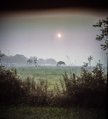 Texas 204 (johnrodden61053) Tags: texas morning sunrise