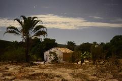 Casinha Sertaneja (erikabarthira) Tags: casinha sertaneja serto noturna cuestrelado potica nordeste