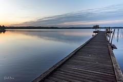 22102016-PBP_6021 (Berns Patrick) Tags: pins landes lac azur foret soleil matin ponton pigne