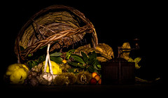 Autumnal Light Painting (diego_russo) Tags: autunno atngiu atonzu autumnal lightpainting autumnallightpainting diegorusso pischedda castagne castanza chestnut leaves foglie fozas melachidonza melacotogna uva grapes niga ghina lisirione lidone corbezzolo