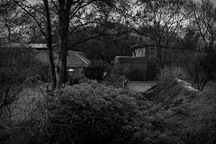 cottage view (frosty morning) (N .P) Tags: countryside xt1 england view frosty mono morning