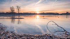 Sunrise at frozen Hatertse vennen (NL) (Henk Verheyen) Tags: hatertsevennen bevroren blauw frozen geel ice ijs landscape landschap oranje rood sunrise vennen water zonsopkomst outdoor cold tree sun
