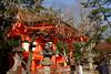 日本 京都奈良5日遊 Koyto&Nara JAPAN_20160225_315 (PS612) Tags: 日本 京都府 北野天滿宮 kitanotenmangushrine sagano kyoto japan spring fujifilmxt10