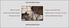 Deconstruction (Walter A. Aue) Tags: verbopictorial decolored deconstruction hoarfrost ice tree walteraaue puzzling 35