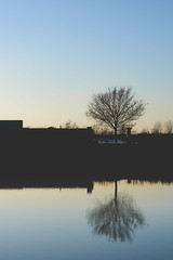 (jsmits447) Tags: netherlands brabant helmond brouwhuis amateur d3200 50mm f18g afs nikon prime autumn urban canal water reflection reflections outdoor outdoors outside clearsky silhouette dslr