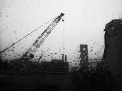 "Memories of RICOH's PX 7-15 (HAKUDO is busy (""_"")) Tags: ricoh px black white sapporo hokkaido japan japon crane daido constrast"