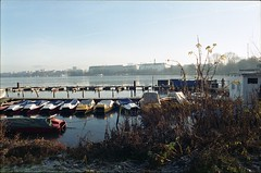 Outer Alster River shortly before OSCE summit in Hamburg (Monsieur Okkult-Okular) Tags: alster river artificiallake innercity lake riverside embankment banks waterside lakeside waterfront hamburg germany winter lateautumn latefall plants boats jetty landingstage cityscape urban urbanarte sunlight analog analogue colors colours color colour negative 35mm expired fuji fujicolor superia 200 contaxst daylight epsonperfectionv500 film manuallens naturallight northerngermany outdoor prime scenery retro ufer wideangle rotherbaum stgeorg hotelatlantic kempinski