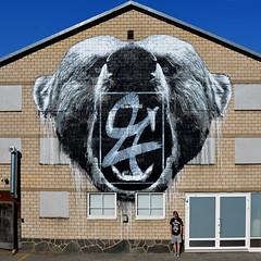 ROAR!!! Wall mural, Pori, Finland, 2015