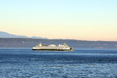 IMG_5260 (dmaxey78754) Tags: washington ferrie dmaxey78754
