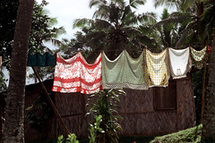 28-208 (ndpa / s. lundeen, archivist) Tags: house color building film fiji rural 35mm countryside village nick clothes laundry southpacific 28 clothesline 1970s 1972 dewolf oceania fijian pacificislands villagelife rurallife nickdewolf photographbynickdewolf reel28