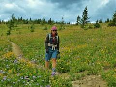 7-090 (Gnarlene) Tags: flower hiking banff healypass monarchramparts