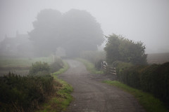 weird lane (matthewheptinstall) Tags: morning mist fog landscape countryside wakefield westyorkshire dawlane painthorpe