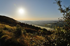 Misty sunrise (smcnally24601) Tags: autumn england mist sunrise downs landscape surrey hills